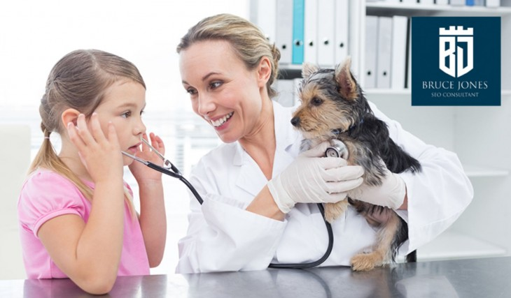 SEO for Veterinarians and Animal Hospitals